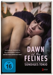 dawn_of_the_felines_cover